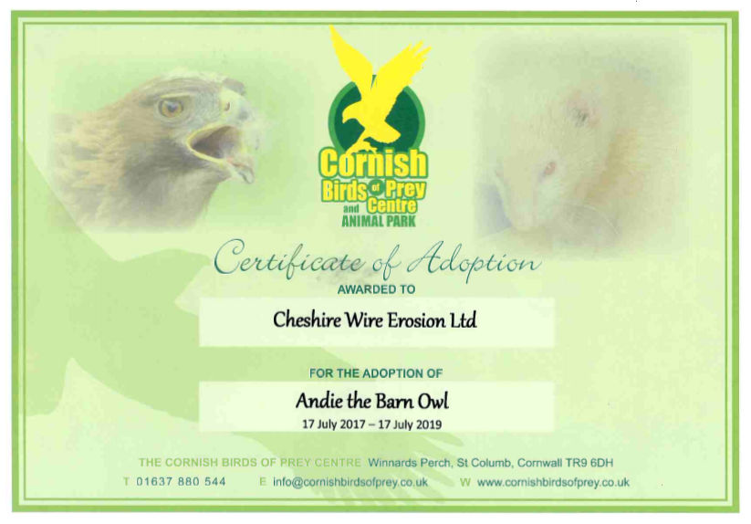 Certificate of Adoption - Andie the Barn Owl